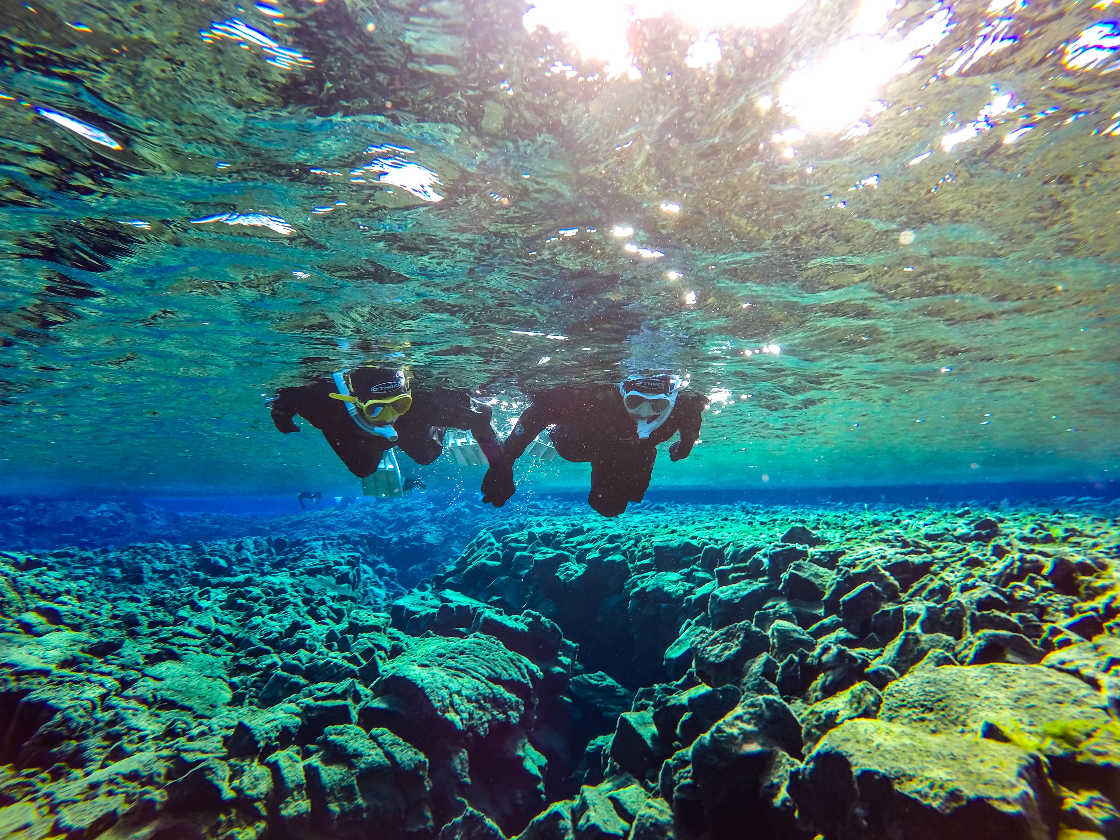 Et par som snorkler, utforsker bunnen av den grunne delen av Silfra-kløften.