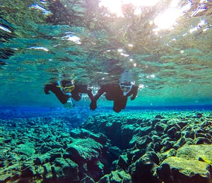 Small-Group Golden Circle & Snorkelling in Silfra | Free Underwater Photos