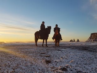 Black Sand Beach by Horseback | Riding Adventure near Vik