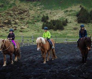 Balade à cheval familiale | Sur la plage de Reynisfjara vers Vik