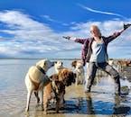 Slitta trainata da cani Livello 1 | Ritrovo sul posto con mezzi propri