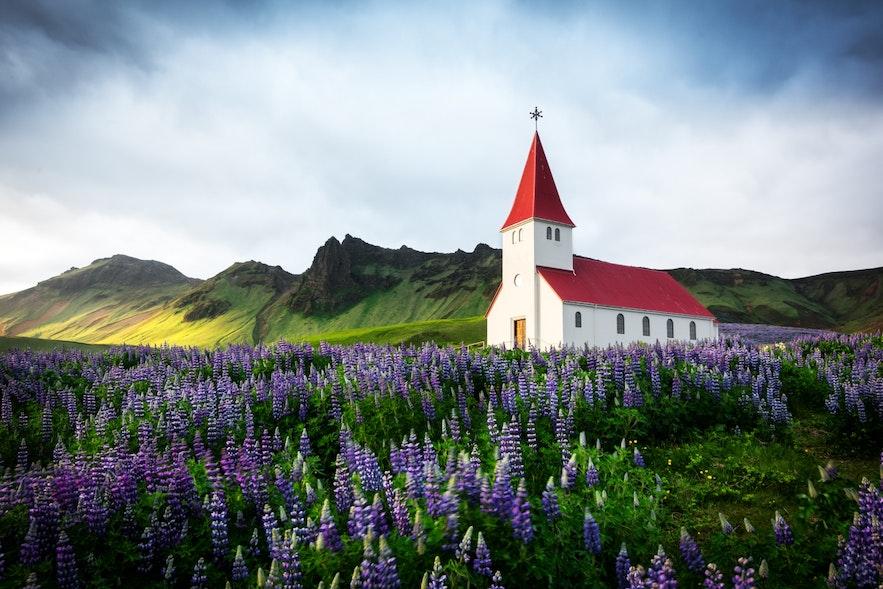 冰岛南岸维克镇的教堂