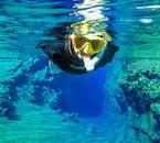 Un plongeur qui regarde la caméra alors qu'il nage et explore la faille de Silfra à Thingvellir, en Islande.