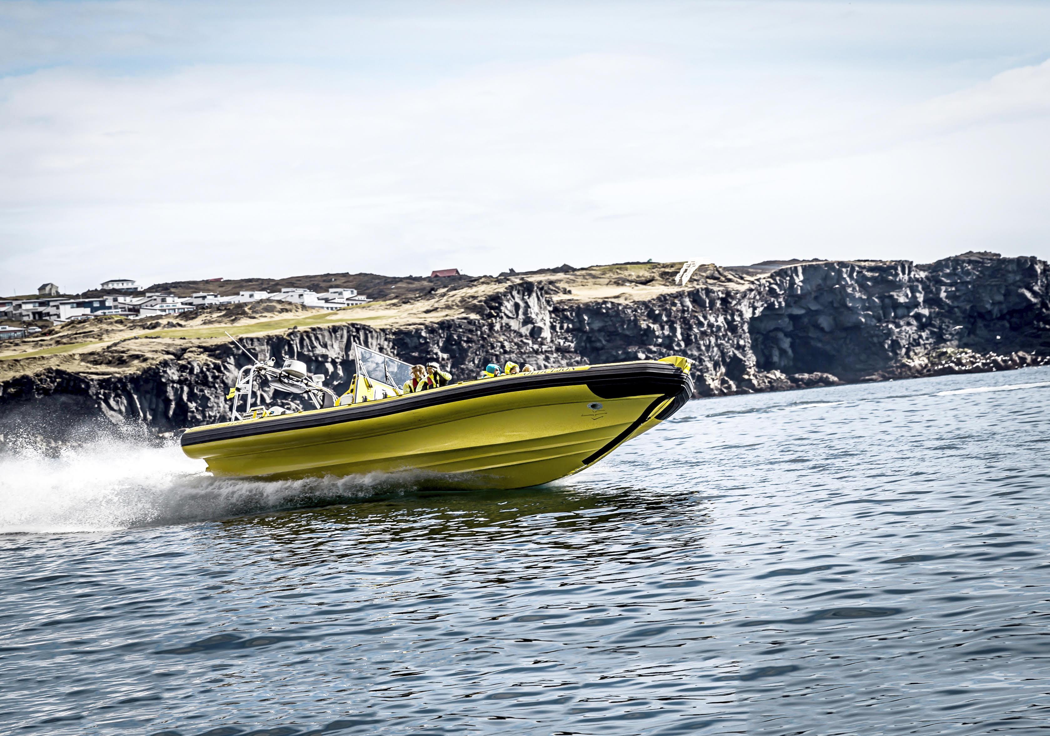 ウェストマン諸島を観光する2時間のRIBボートツアー