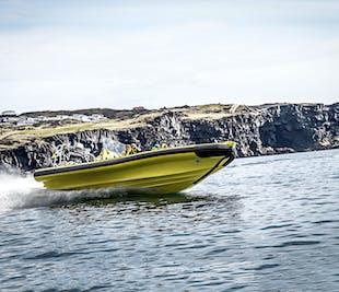 現地集合 ウェストマン諸島を観光する2時間のRIBボートツアー