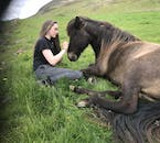 A girl and a horse relaxing before heading out on a righting tour.