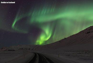 Polowanie na zorzę polarną | Wycieczka Super Jeepem