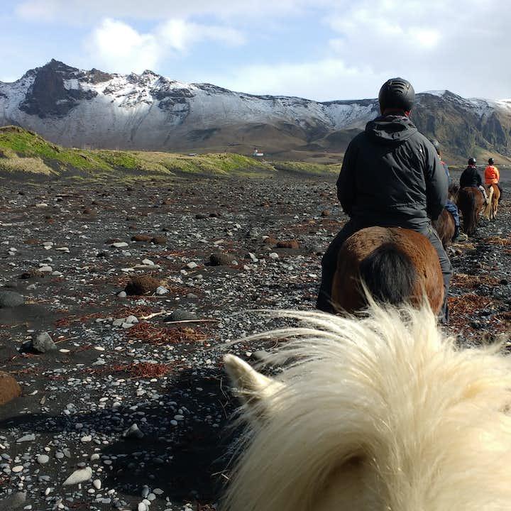 馬の背に乗ってブラックサンドビーチをトレッキングするツアー