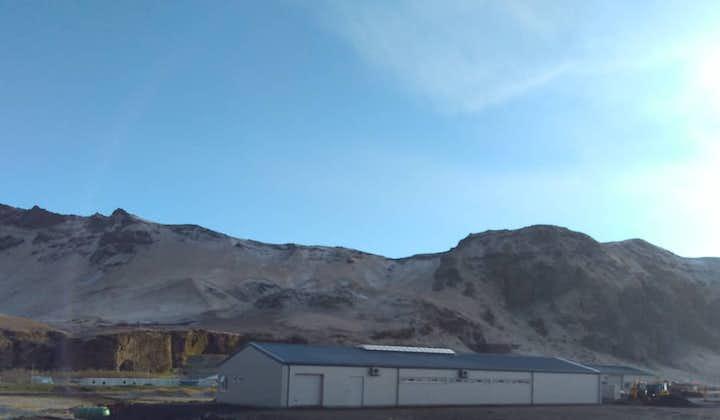 冰岛南岸黑沙滩旁的马场。