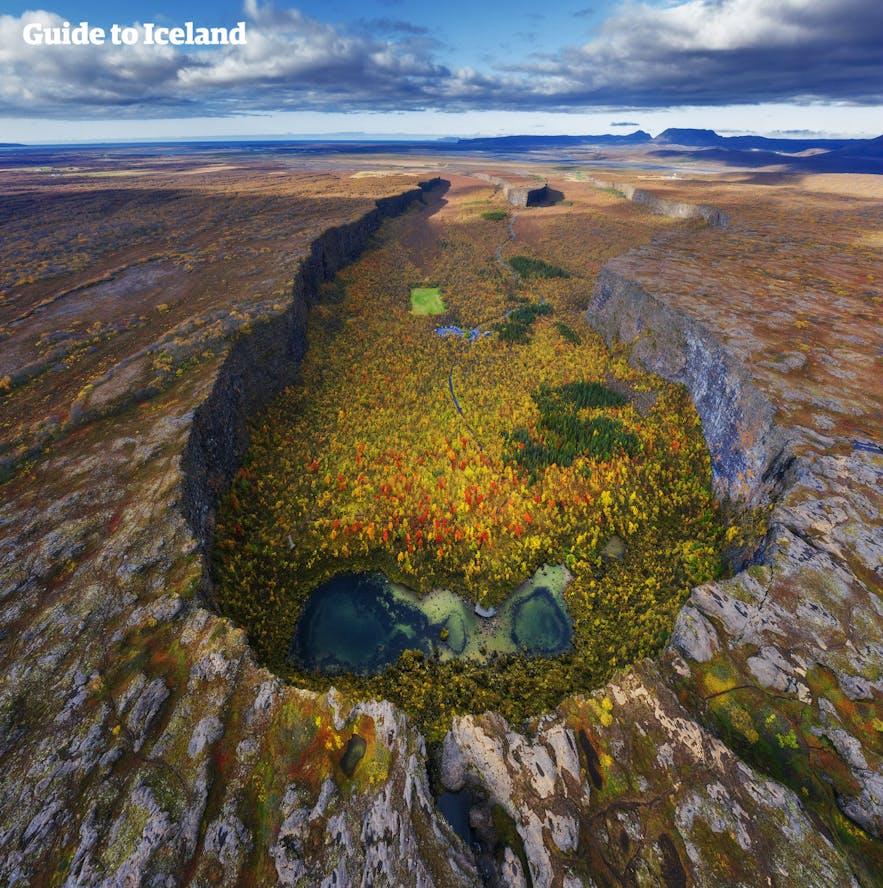 Kanion Asbyrgi na północy Islandii.