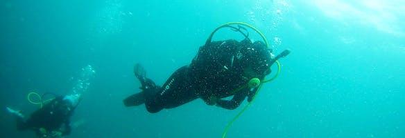 Diving tours.jpg