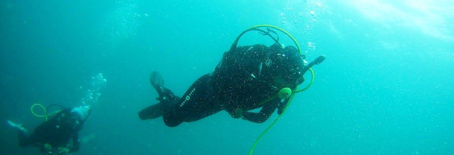 Excursiones de buceo y submarinismo