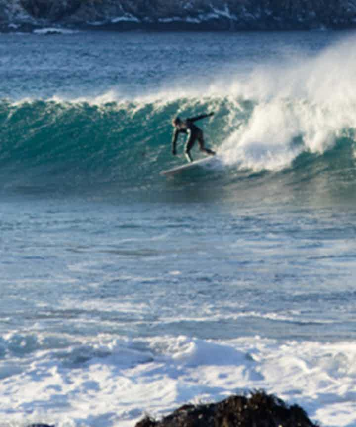 サーフィン ツアー