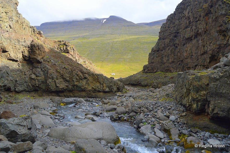 An interesting Hike into the craggy Kotagil Gorge in North-Iceland