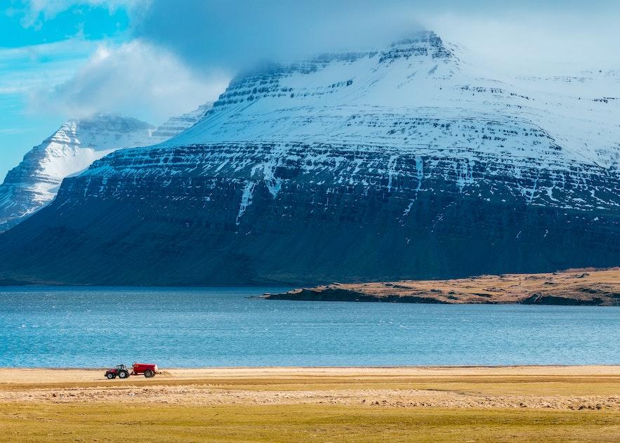 冰島的農地