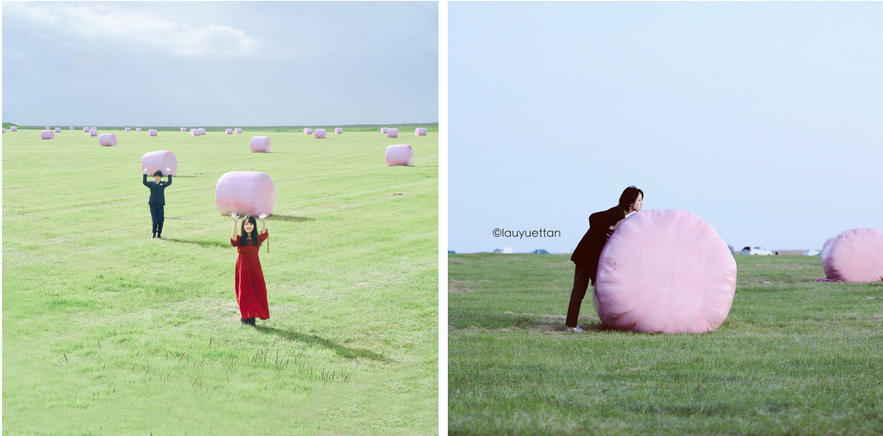 在冰島農地範圍內拍照都需要問當地主人意見