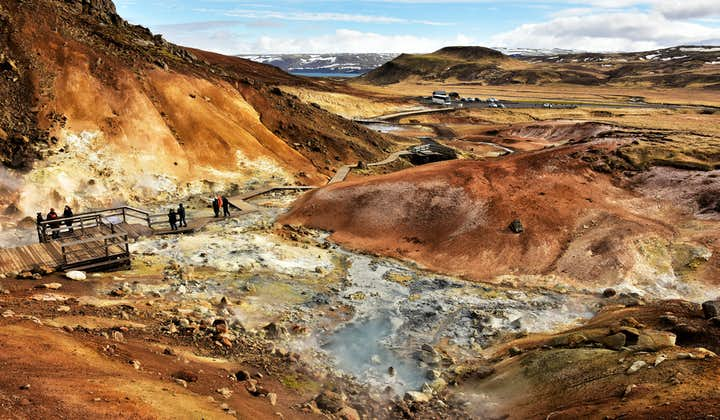 Reykjanes Tour in Small Group   Optional Drop Off at the Blue Lagoon or Keflavik Airport