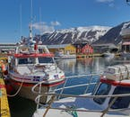 The Westfjords are beautiful from land, but even more spectacular from the sea.