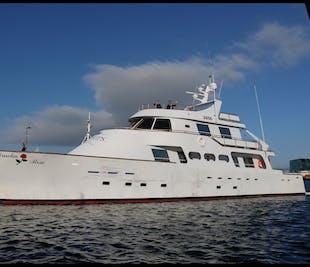 아이슬란드 럭셔리 요트 위 고래관측 투어
