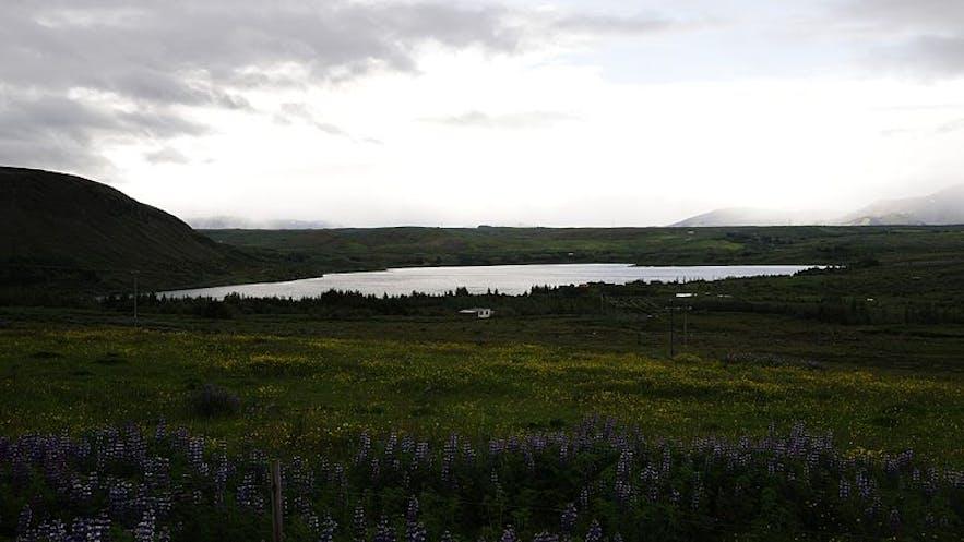 哈夫拉湖位于冰岛首都雷克雅未克的郊区地带