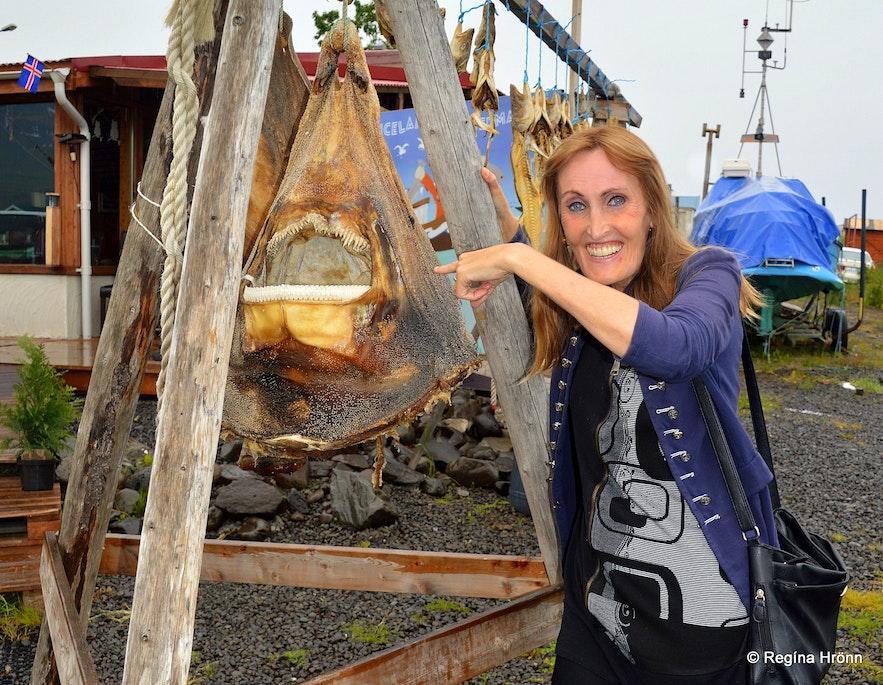 Regína by a shark head at Hauganes