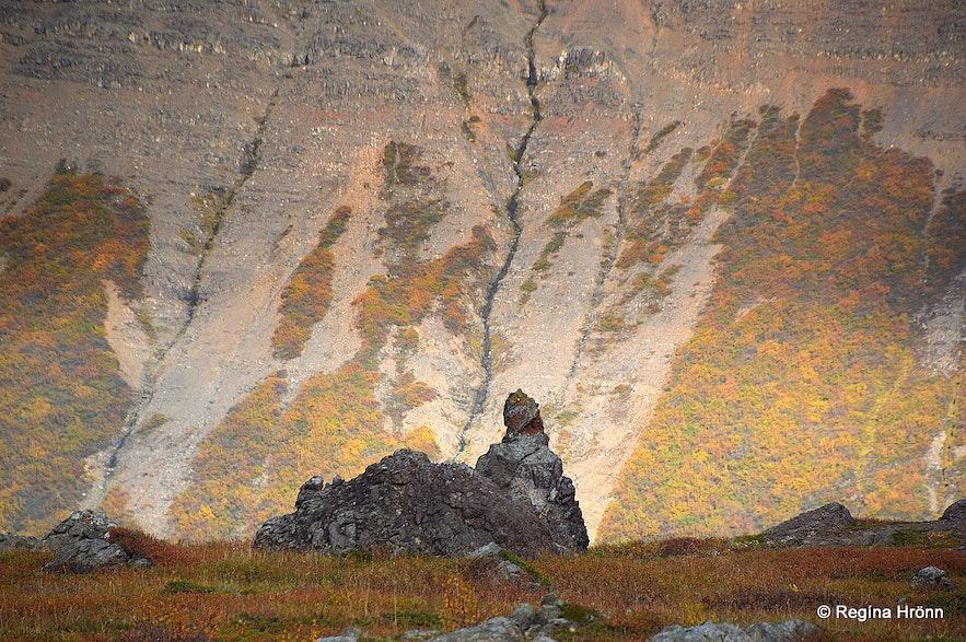 Fnjóskadalur valley