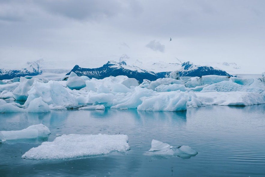 冰島傑古沙龍冰河湖一日遊包團