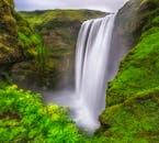 Водопад Скогафосс посреди летней зелени.