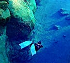 Heading to the bottom is a positive experience if you're diving in Silfra.