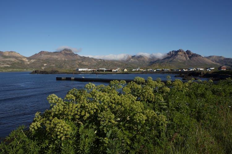 A sunny day over the fjord of Borgarfjörður eystri.