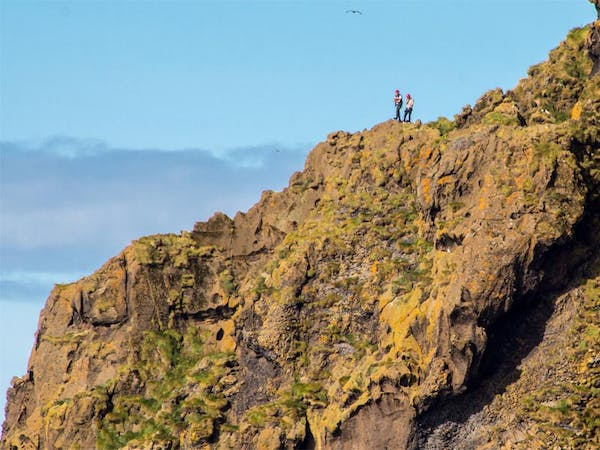 Seabirds and Cliff Adventures