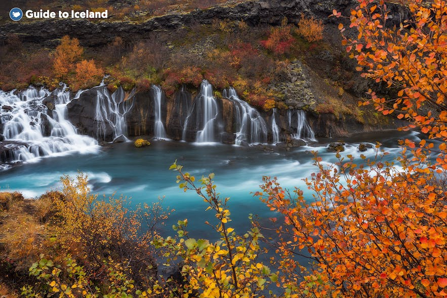 A view of Hraunfossar in autumn.