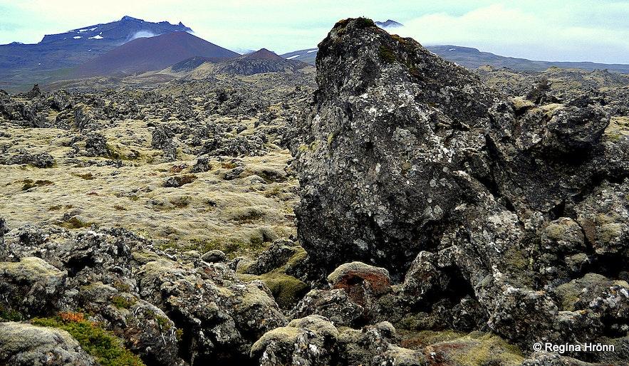 Berserkjahraun lava field in Snæfellsnes
