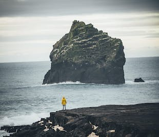 Reykjanes Peninsula and the Continental Rift with a Local Guide