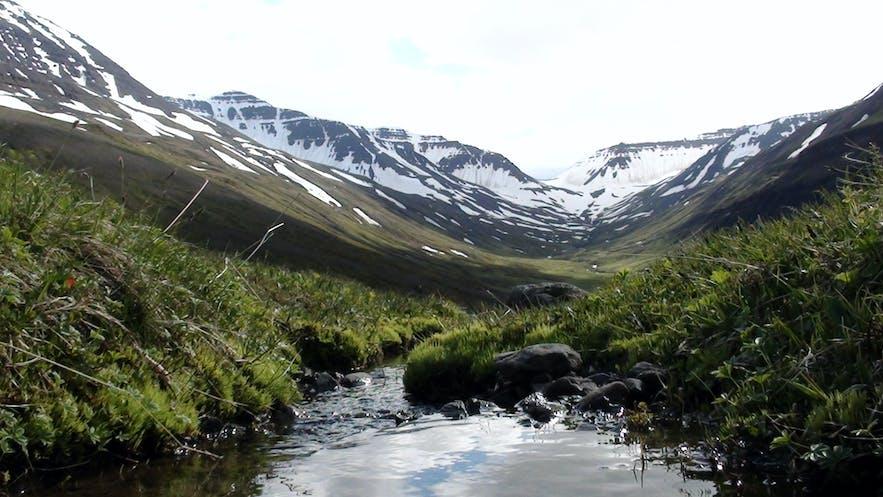 valley in view of mountains in Siglufjörður