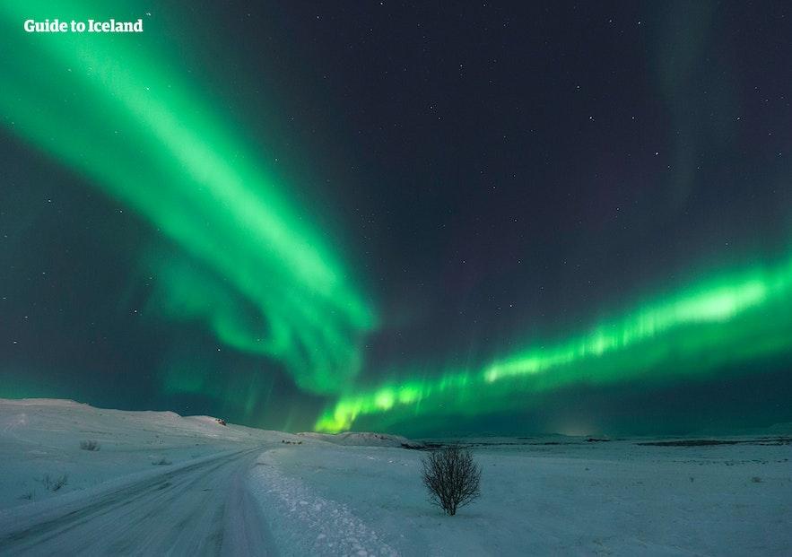 Het wervelende noorderlicht boven een besneeuwde weg in IJsland.