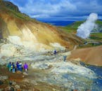 Visit geothermal areas on the Reykjanes Peninsula on this private tour.