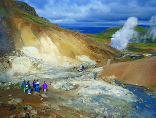 Reykjanes Peninsula with Lava Tunnel & Blue Lagoon   Private Day Tour