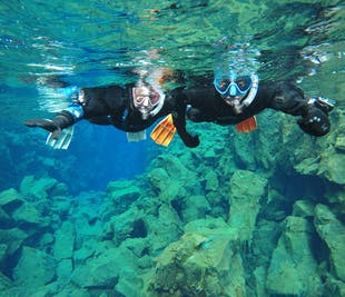 シルフラ発|大陸プレートの間を泳ぐシュノーケリングツアー(水中写真の特典付き)