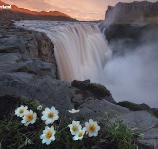 11-дневный летний пакетный тур   По Золотому кольцу Исландии с опытным местным гидом