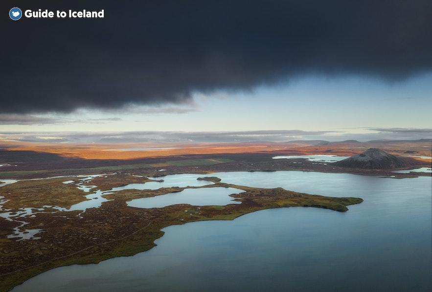 W jeziorze Mývatn w północnej Islandii występuje wiele gatunków ryb.