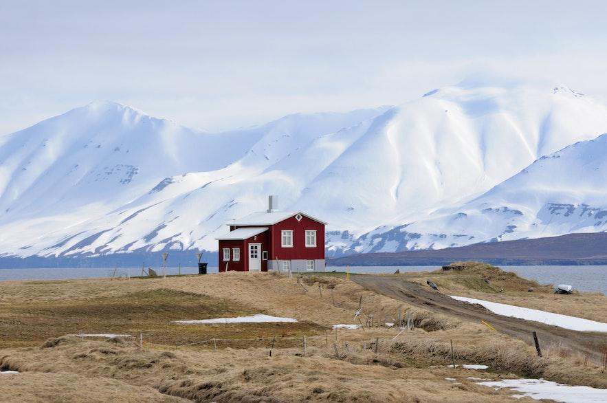 Miejscowość Dalvik na północy Islandii.