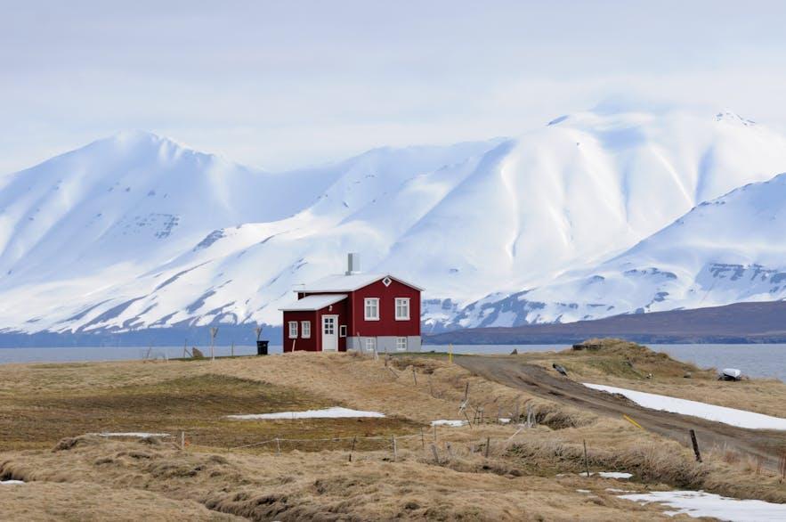 达尔维克在冰岛语中是山谷海湾的意思