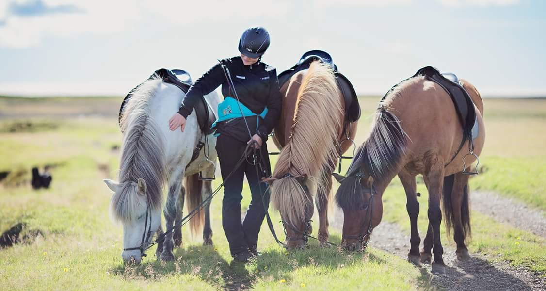 Horse riding is an essential tour for those visiting the land of ice and fire.