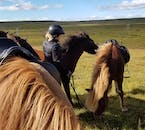 Your will be provided with all necessary equipment for your horse riding experience.