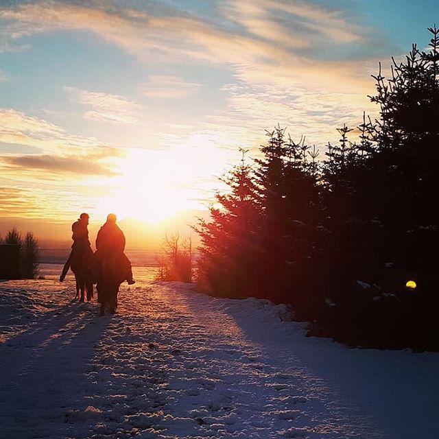 Horse riding under the soft winter sun.
