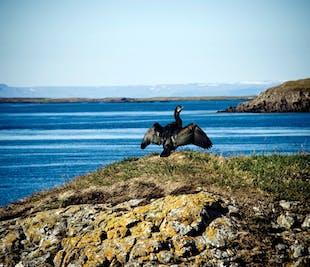 Prom z Fiordów Zachodnich | Na Snaefellsnes przez wyspę Flatey