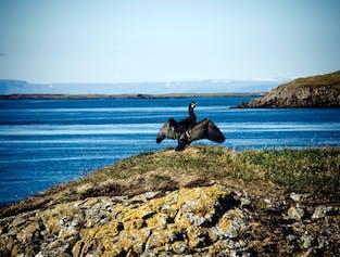 Baldur Ferry from the Westfjords to the Snaefellsnes Peninsula   Via Flatey Island
