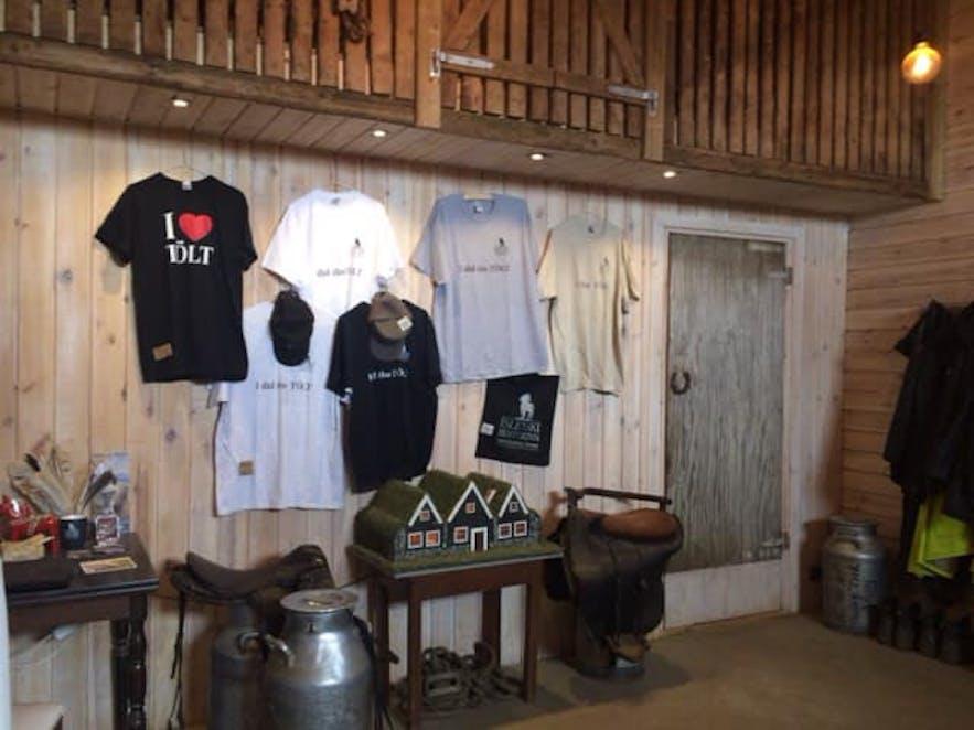 乗馬体験ツアーの待合室内部
