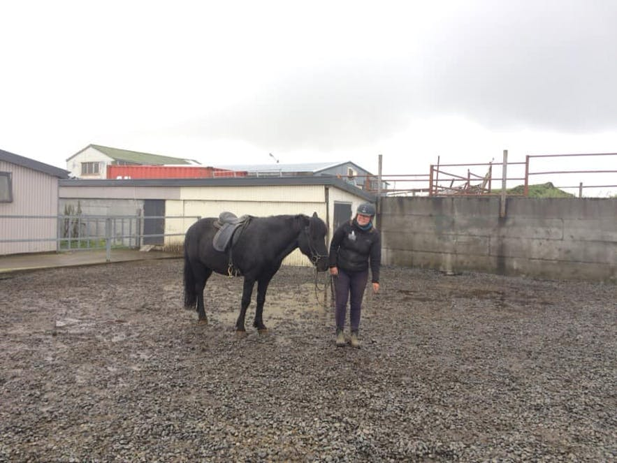 サルカさんと黒い馬